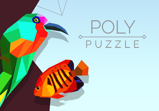 Poly Puzzle 548 x 384